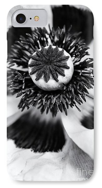 Papaver Orientale Perrys White IPhone Case by Tim Gainey