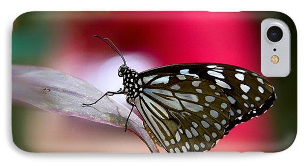 Paper Kite Butterfly  Phone Case by Saija  Lehtonen