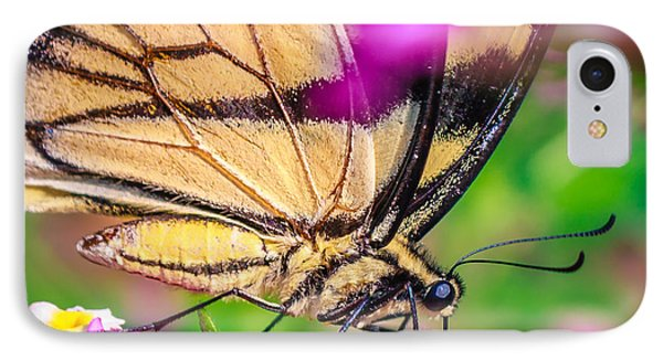 IPhone Case featuring the photograph Papilio Glaucus by Rob Sellers