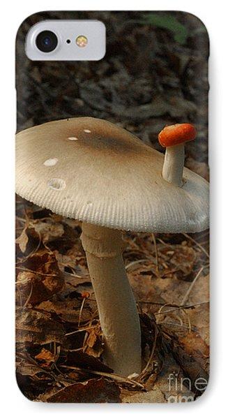 Parasol Mushroom Macrolepiota Sp Phone Case by Susan Leavines