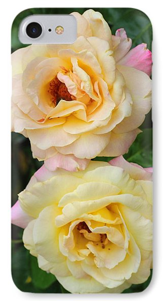 Peace Roses IPhone Case by Cathy Lindsey