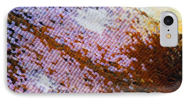 Peacock Butterfly Wing Scale Detail IPhone Case by Frans Hodzelmans