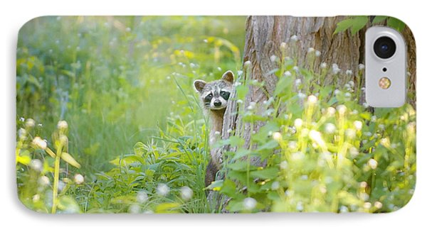 Raccoon iPhone 7 Case - Peek A Boo by Carrie Ann Grippo-Pike