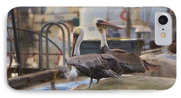 Pelican Duo Phone Case by Donna Greene