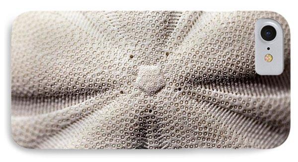 Pentagonal Symmetry Echinoid Sea Biscuit IPhone Case
