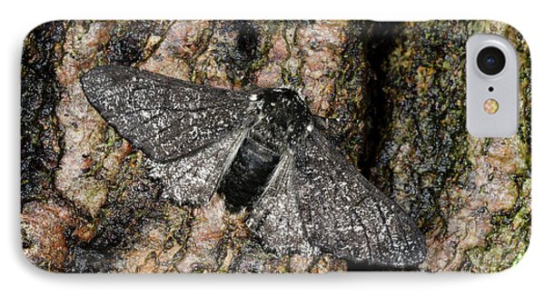 Peppered Moth IPhone Case by Nigel Downer
