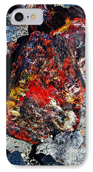 Petrified Wood Log Rainbow Crystalization At Petrified Forest National Park IPhone Case by Shawn O'Brien