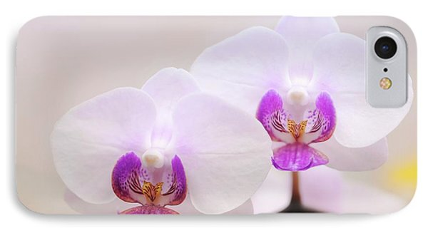 Phalaenopsis Orchid Flowers IPhone Case by Maria Mosolova