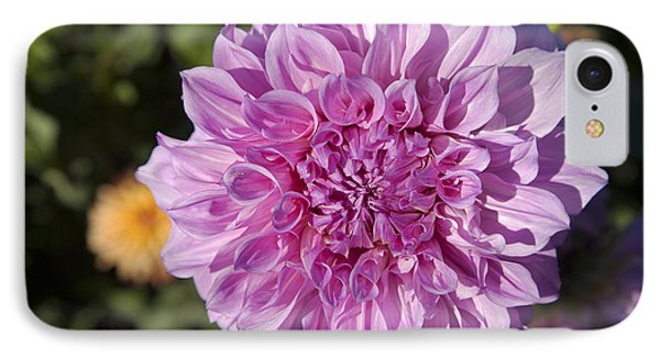 Pink Dahlia Phone Case by Peter French