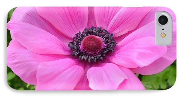IPhone Case featuring the photograph Pink Flower by Jeannie Rhode