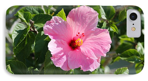 Single Pink Hibiscus IPhone Case