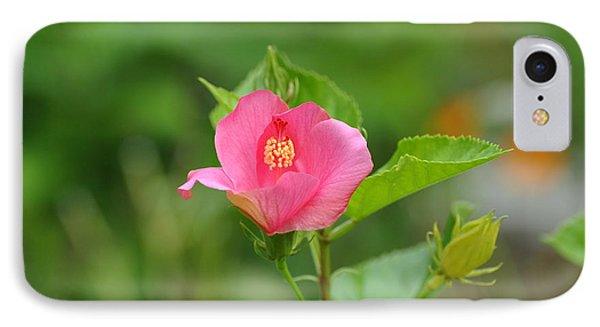 IPhone Case featuring the photograph Pink Hybiscus Bud by Jodi Terracina