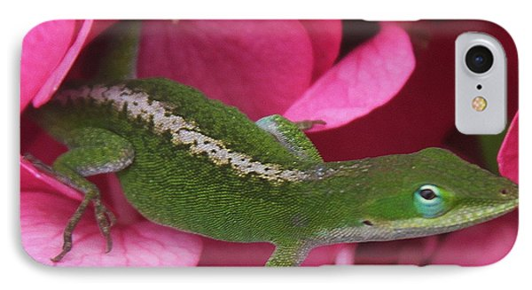 Pink Hydrangea And Lizard 2 IPhone Case by Cathy Lindsey