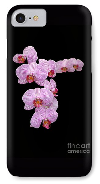 Pink Orchids Phone Case by Tom Prendergast