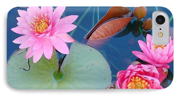 Pink Water Lilies IPhone Case by Charlotte Gray