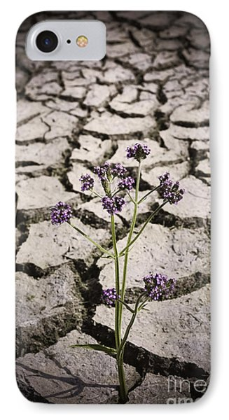 Plant Growing Through Dirt Crack During Drought   IPhone Case