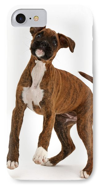 Playful Brindle Boxer Puppy IPhone Case by Mark Taylor