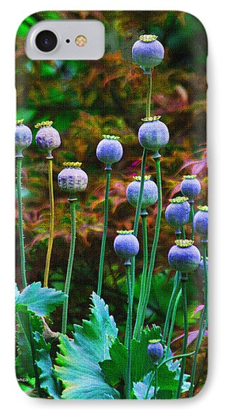 Poppy Seed Pods IPhone Case by Tom Janca