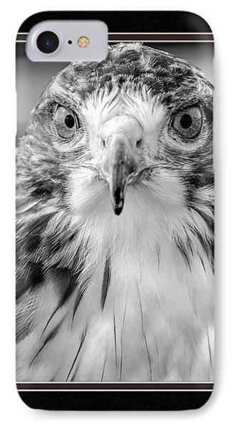 Predatorial Glare IPhone Case by Charles Feagans