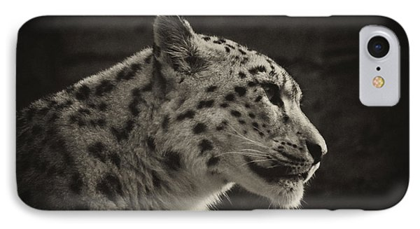 Profile Of A Snow Leopard IPhone Case by Chris Boulton