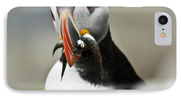 Puffin With Fish Phone Case by Heiko Koehrer-Wagner