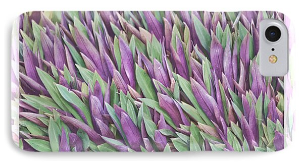 Purple And Green IPhone Case by Holly Kempe