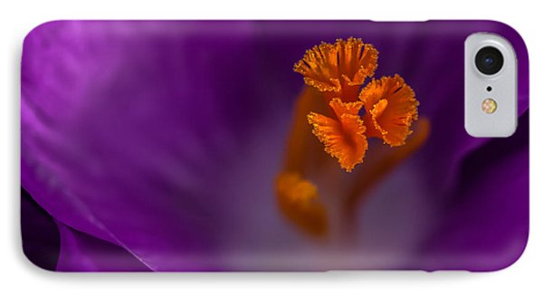 IPhone Case featuring the photograph Purple Crocus by Bob Noble Photography