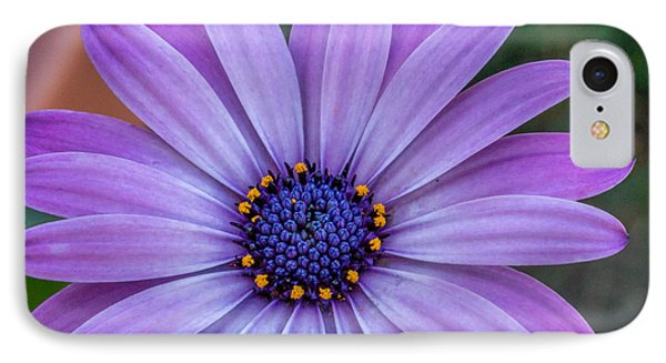 Purple Flower  IPhone Case by Trace Kittrell