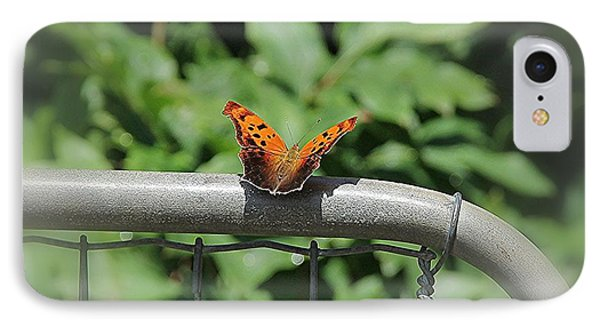 IPhone Case featuring the photograph Question Mark Butterfly by Yumi Johnson