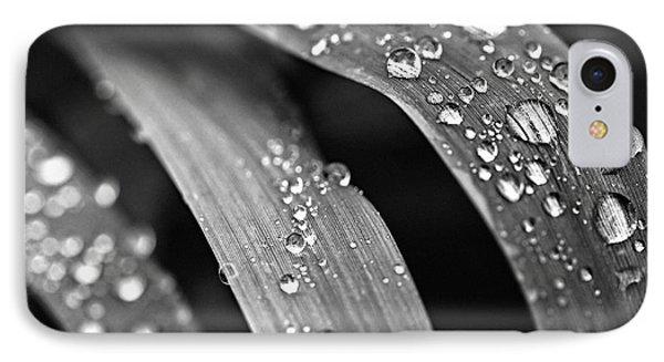 Raindrops On Grass Blades IPhone Case by Elena Elisseeva