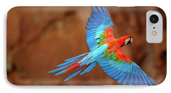 Red And Green Macaw Flying IPhone 7 Case by Pete Oxford