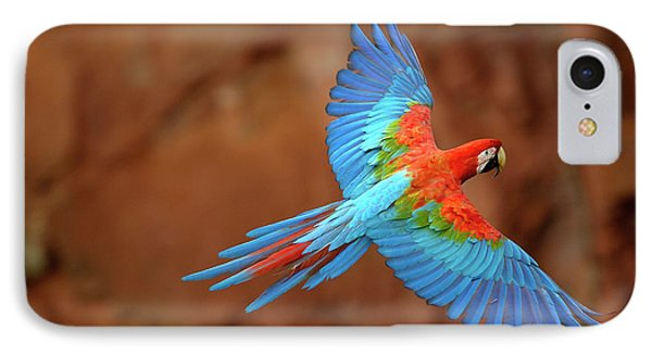Red And Green Macaw Flying IPhone Case by Pete Oxford