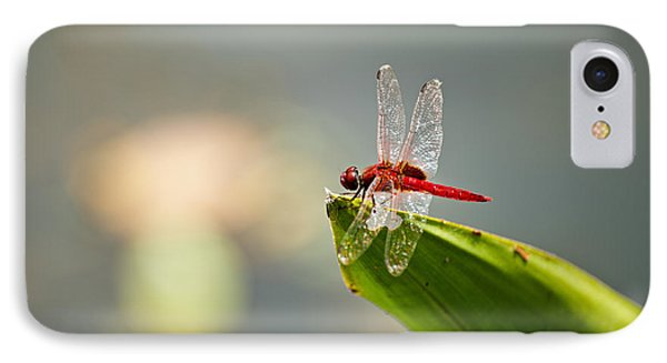 Red Dragonfly Phone Case by Ulrich Schade