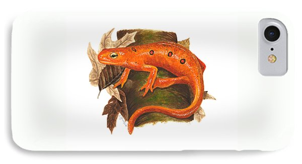 Red Eft IPhone Case by Cindy Hitchcock