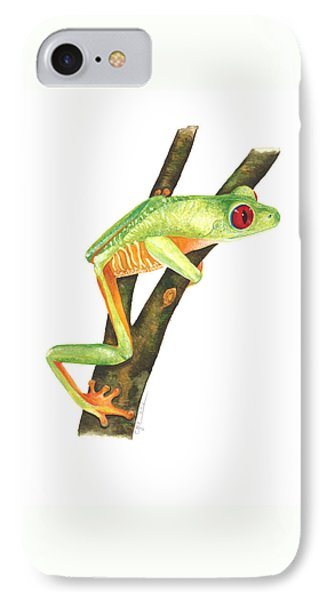 Red-eyed Treefrog IPhone Case by Cindy Hitchcock