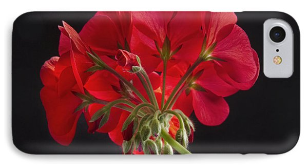 Red Geranium In Progress IPhone Case by James BO  Insogna