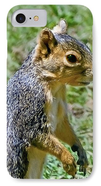Red Squirrel Phone Case by Bob and Nadine Johnston
