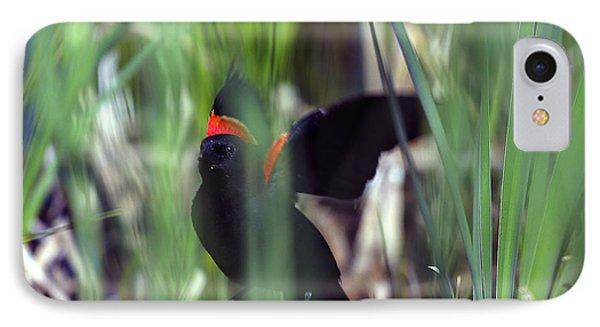Red-winged Blackbird Phone Case by Steven Ralser