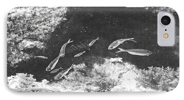 Reef Tide Pool IPhone Case by Frank Wilson