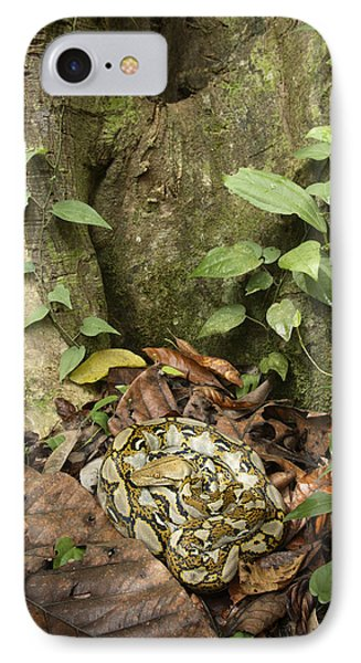 Reticulated Python IPhone Case