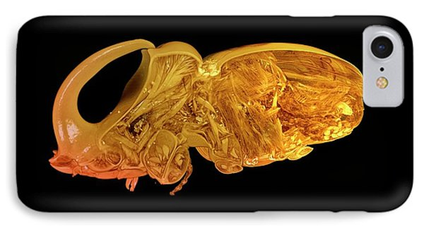 Boa Constrictor iPhone 7 Case - Rhinoceros Beetle by Dan Sykes/natural History Museum, London