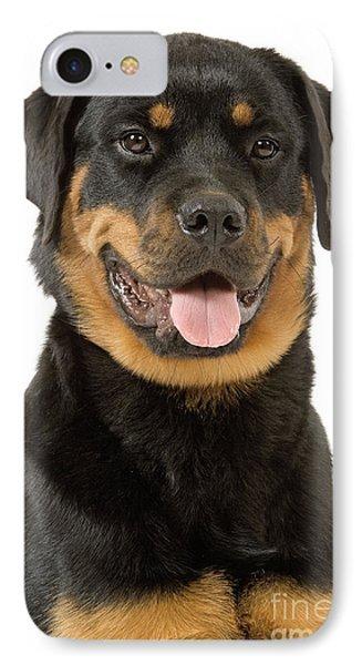 Rottweiler Dog IPhone Case by Jean-Michel Labat