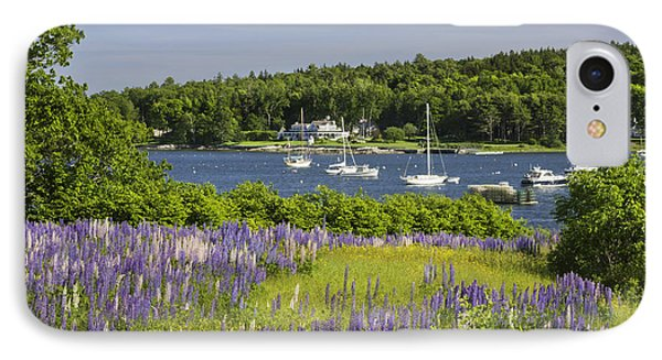 Round Pond Lupine Flowers On The Coast Of Maine IPhone Case