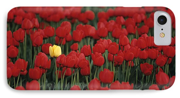 Rows Of Red Tulips With One Yellow Tulip Phone Case by Jim Corwin