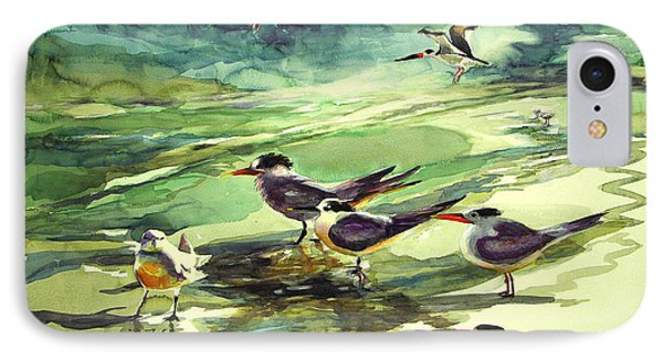 Royal Terns And Black Skimmers Phone Case by Julianne Felton
