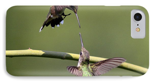 Ruby-throated Hummingbird IPhone Case