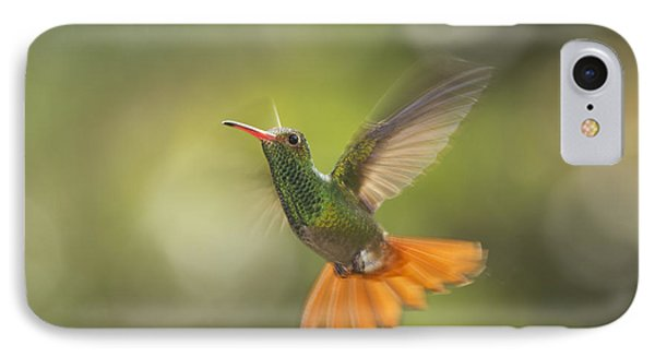 Rufous-tailed Hummingbird IPhone Case