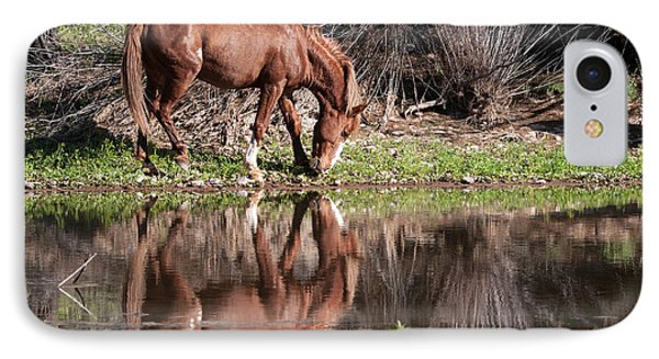 Salt River Wild Horse IPhone Case