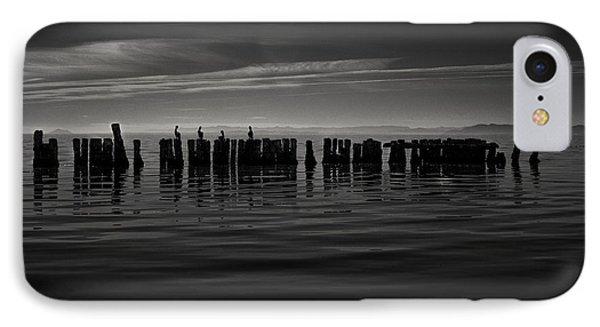 Salton Sea Piles IPhone Case by Ralph Vazquez