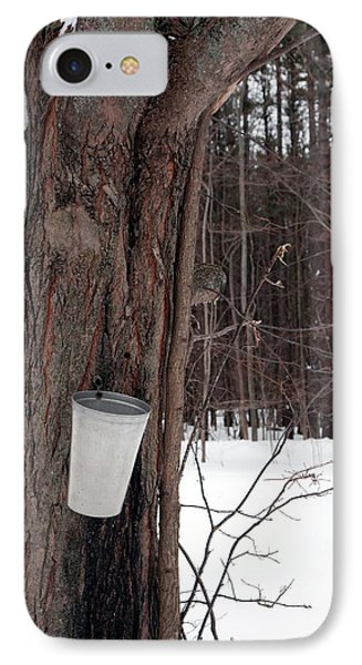 Sap Collection From Maple Tree IPhone Case by Jim West